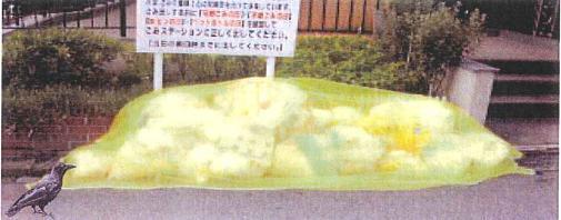 karasu-1.JPG
